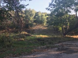 lot 59 Taylor Dr Drive, Marble Falls, TX 78654 (#145610) :: The ZinaSells Group