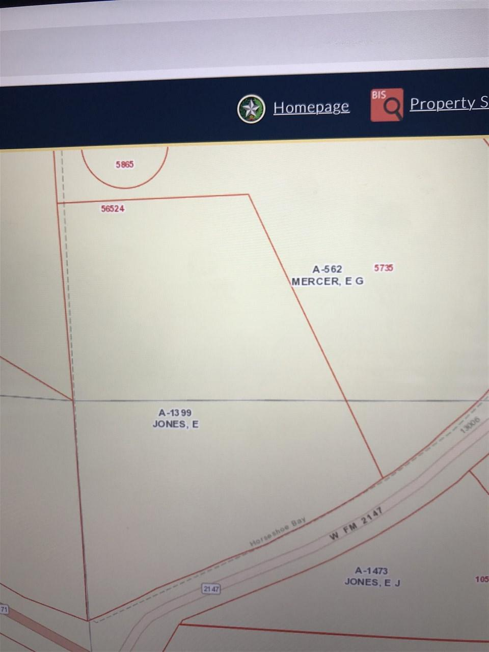 Tract/Lot 2001 Fm 2147/Hwy 71 - Photo 1