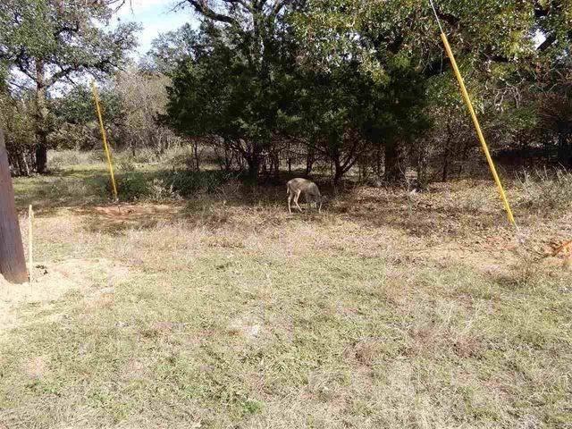 Lot 207 Pecan Lane, Cottonwood Shores, TX 78657 (#150841) :: Zina & Co. Real Estate