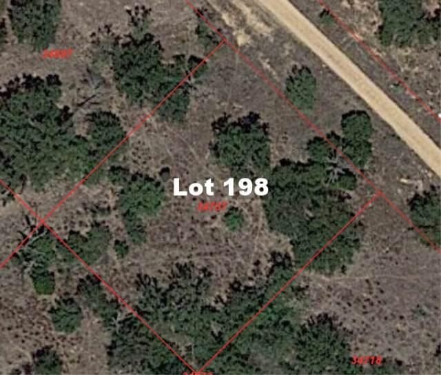 Lot 198 Longmont, Kingsland, TX 78639 (#150892) :: Zina & Co. Real Estate
