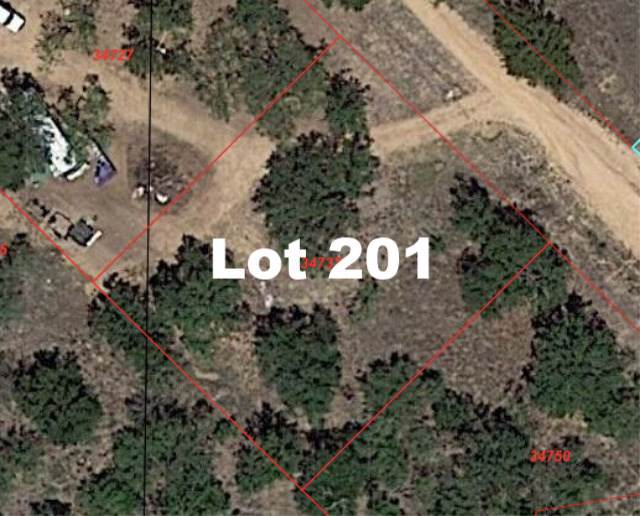 Lot 201 Longmont, Kingsland, TX 78639 (#150894) :: Zina & Co. Real Estate