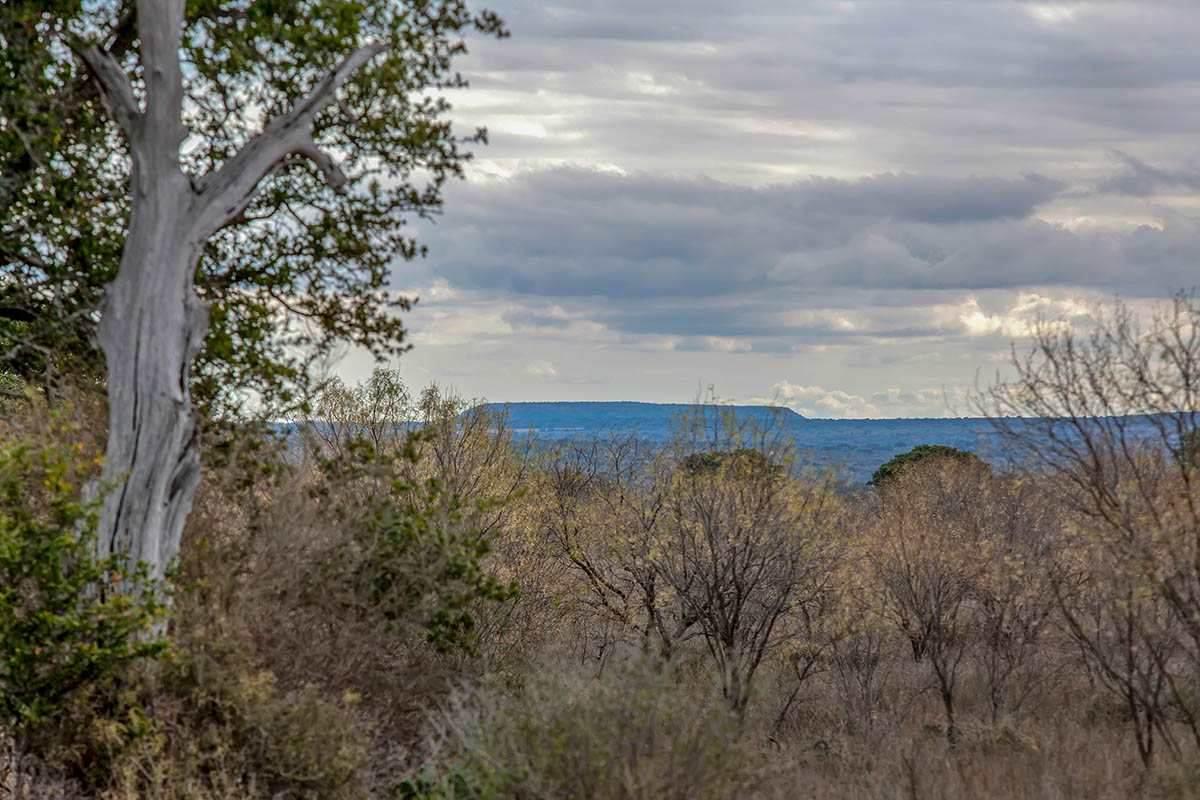 0000 Maso-Llano Road - Photo 1