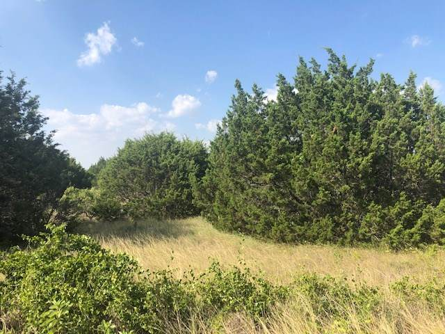 Lot 60 Sunset Peak, Bertram, TX 78605 (#152910) :: Zina & Co. Real Estate