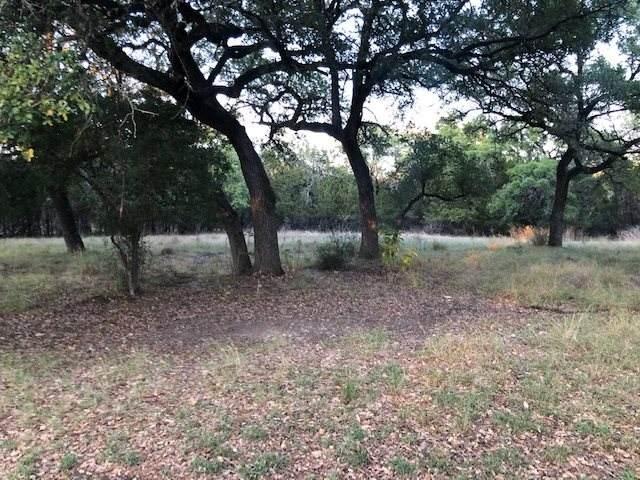 lots 54 and 55 Travis Oaks Drive, Marble Falls, TX 78654 (#153924) :: Zina & Co. Real Estate