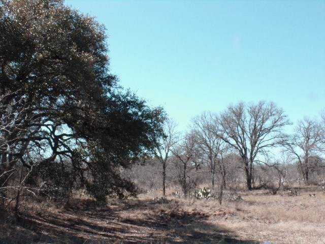 00 County Road 102, Llano, TX 78643 (#155115) :: Realty Executives - Town & Country