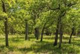00 Mystic Oaks Trail - Photo 1