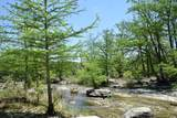 292 Stablewood Springs Dr - Photo 45