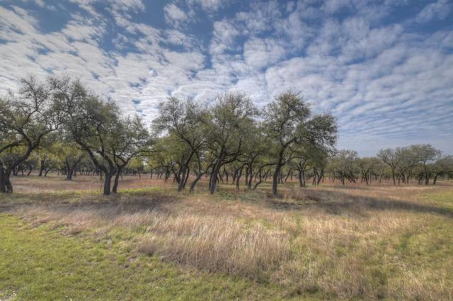 Blanco, TX 78606 :: Absolute Charm Real Estate