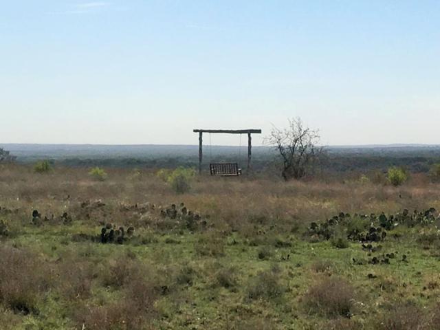 1483 -- Summit Ridge Trail, Johnson City, TX 78636 (MLS #75438) :: Absolute Charm Real Estate