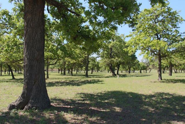 283 -- Lakewood Lane, Fredericksburg, TX 78624 (MLS #75571) :: Absolute Charm Real Estate