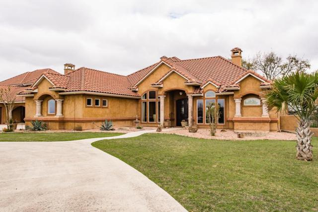 3621 E Ranch View Court, Kerrville, TX 78028 (MLS #75633) :: Absolute Charm Real Estate