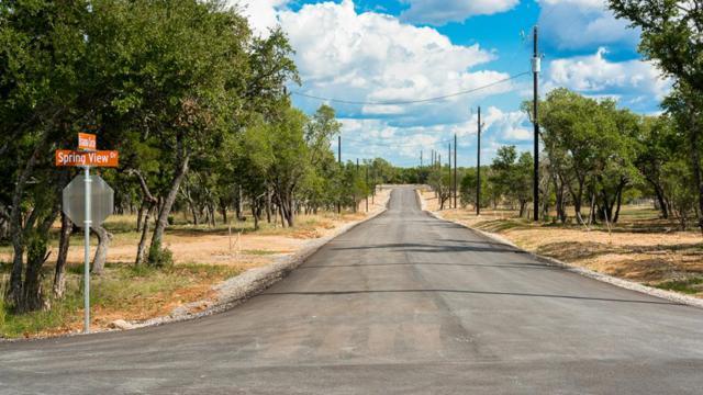 101 -- Brianna Circle, Johnson City, TX 78636 (MLS #75755) :: Absolute Charm Real Estate