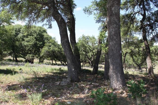 55 NW Tonkawa St., Fredericksburg, TX 78624 (MLS #75996) :: Absolute Charm Real Estate