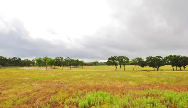 8 -- Goehmann Oaks Rd, Fredericksburg, TX 78624 (MLS #76019) :: Absolute Charm Real Estate