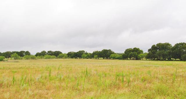 8 -- Goehmann Oaks Rd, Fredericksburg, TX 78624 (MLS #76020) :: Absolute Charm Real Estate