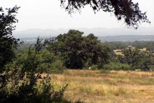 07 -- Summit Ridge Trail, Johnson City, TX 78636 (MLS #76050) :: Absolute Charm Real Estate