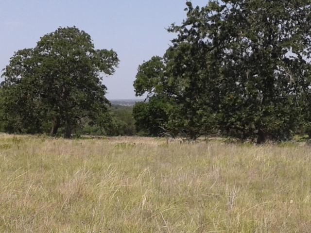 9207 S Hwy 87, Fredericksburg, TX 78624 (MLS #76132) :: Absolute Charm Real Estate