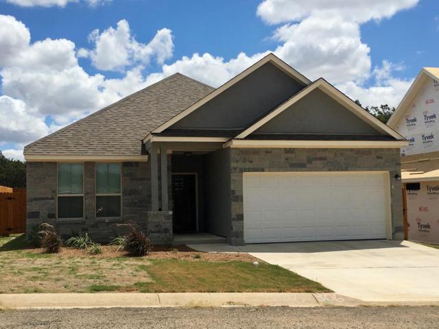 229 -- Riley Lane, Fredericksburg, TX 78624 (MLS #76277) :: Absolute Charm Real Estate