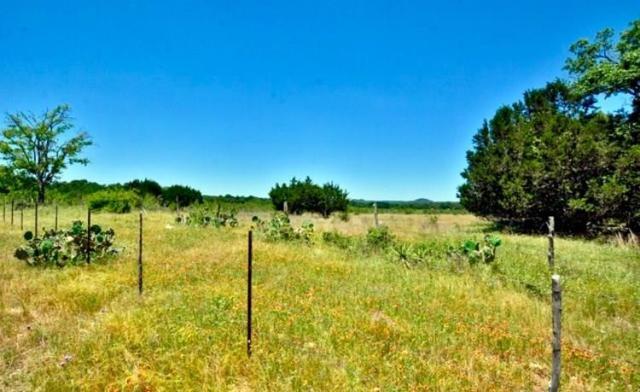 2058 -- Crabapple Road, Blanco, TX 78606 (MLS #76303) :: Absolute Charm Real Estate