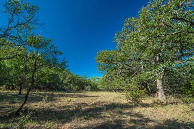 0 NE W C Ranch Rd, Willow City, TX 78675 (MLS #76386) :: Absolute Charm Real Estate