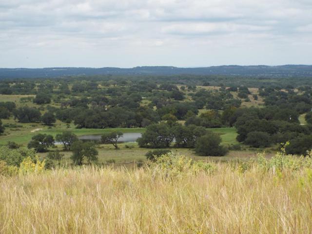 660 -- Summit Ledge Dr., Johnson City, TX 78636 (MLS #76588) :: Absolute Charm Real Estate