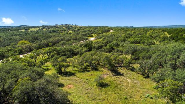 2058 W Crabapple Road, Blanco, TX 78606 (MLS #76636) :: Absolute Charm Real Estate