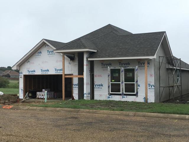 203 -- Winston Dr, Fredericksburg, TX 78624 (MLS #76674) :: Absolute Charm Real Estate