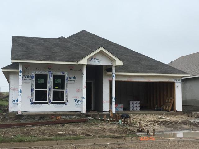 205 -- Winston Dr, Fredericksburg, TX 78624 (MLS #76675) :: Absolute Charm Real Estate