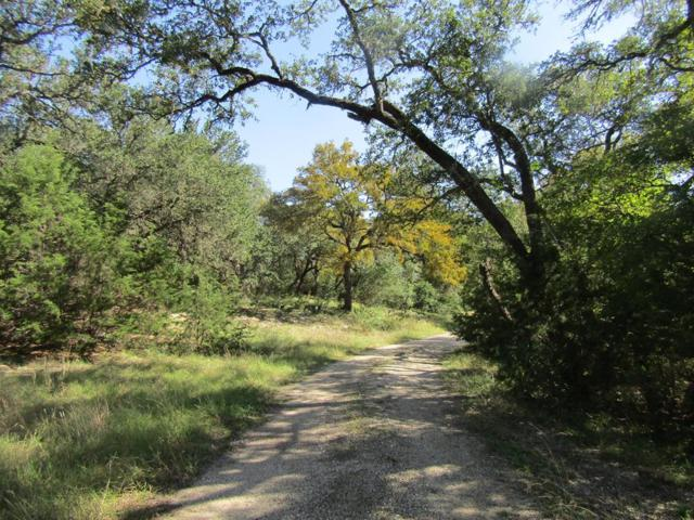 490 SE Forest View Dr, Blanco, TX 78606 (MLS #76702) :: Absolute Charm Real Estate