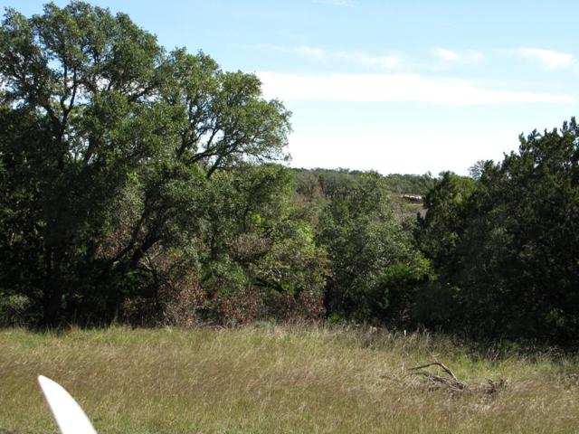 7196 SW Fm 2093, Fredericksburg, TX 78624 (MLS #76734) :: Absolute Charm Real Estate