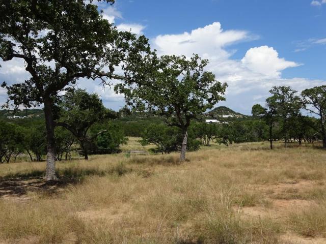 0 -- Cool Water Ranch Rd, Fredericksburg, TX 78624 (MLS #76759) :: Absolute Charm Real Estate