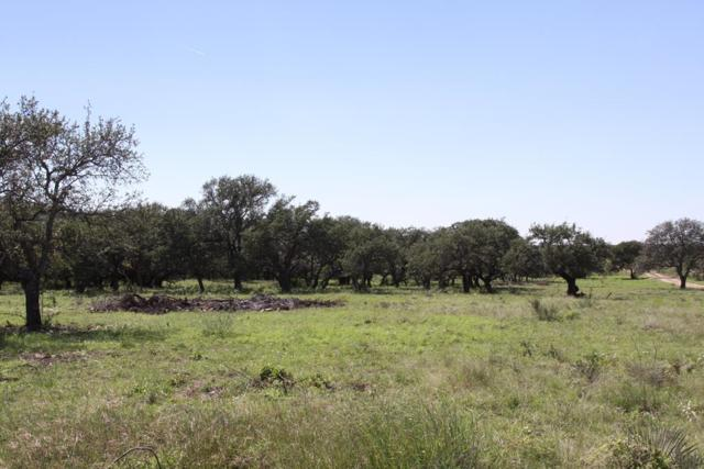 Mason, TX 76856 :: Absolute Charm Real Estate