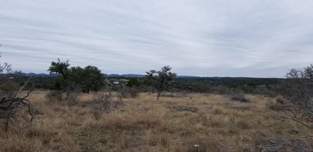 000 SE River View Dr, Johnson City, TX 78636 (MLS #77010) :: Absolute Charm Real Estate