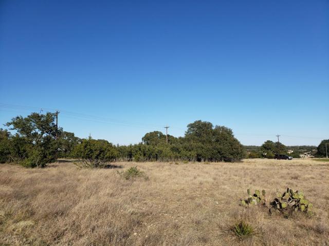 TBD SE Peter Kleid Loop, Blanco, TX 78606 (MLS #77028) :: Absolute Charm Real Estate