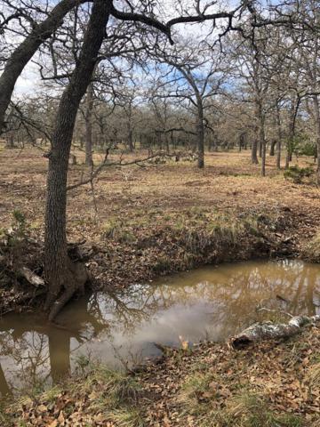 TBD -- Hollmig Lane, Fredericksburg, TX 78624 (MLS #77035) :: Absolute Charm Real Estate