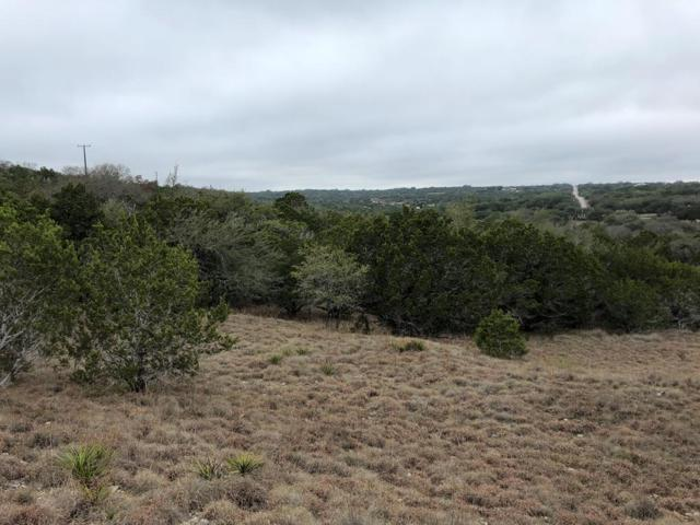 596 -- Wildwood Dr, Johnson City, TX 78636 (MLS #77043) :: Absolute Charm Real Estate