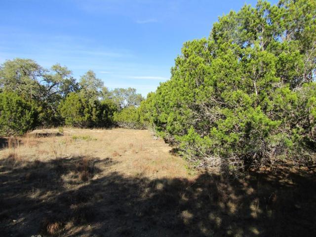 TBD SW Cielo Springs Dr, Blanco, TX 78606 (MLS #77050) :: Absolute Charm Real Estate