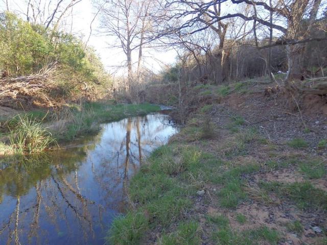 41 -- Basse Lane, Fredericksburg, TX 78624 (MLS #77251) :: The Glover Homes & Land Group