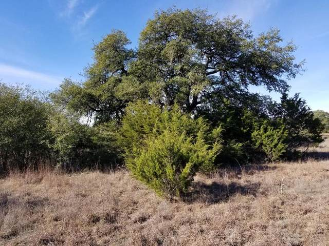 0 -- Gregario Garcia, Blanco, TX 78606 (MLS #79442) :: Reata Ranch Realty