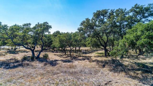00 -- Axis Circle, Fredericksburg, TX 78624 (MLS #79553) :: Reata Ranch Realty