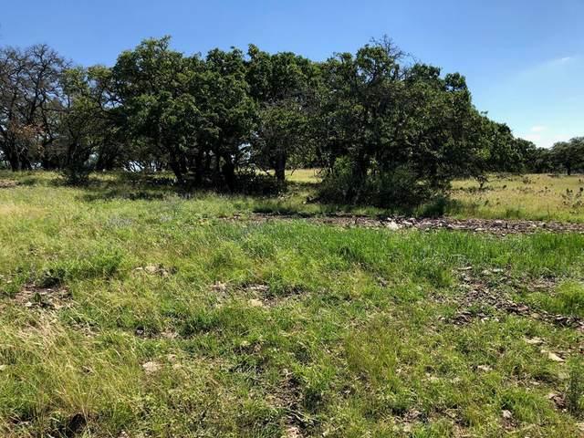 00 W Hwy 290, Fredericksburg, TX 78624 (MLS #80073) :: Reata Ranch Realty