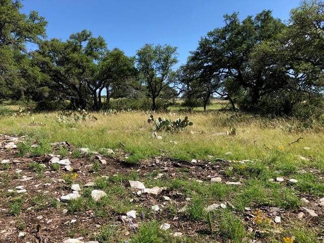000 W Hwy 290, Fredericksburg, TX 78624 (MLS #80075) :: Reata Ranch Realty