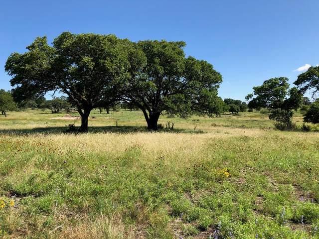 00 W Hwy 290, Fredericksburg, TX 78624 (MLS #80077) :: Reata Ranch Realty