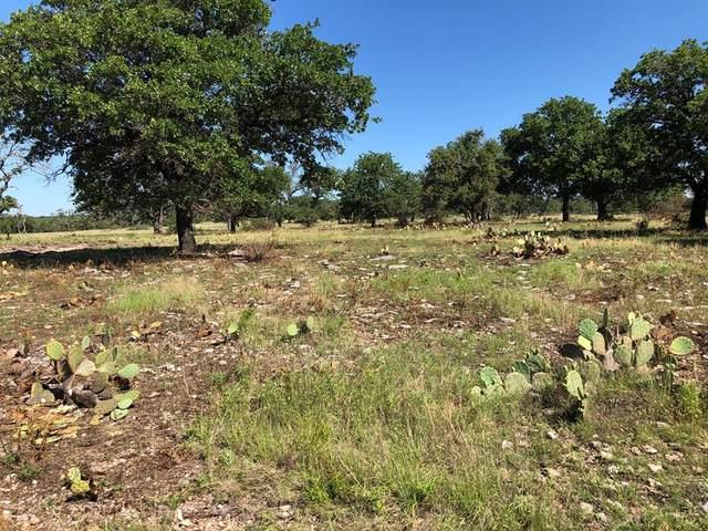 00 W Hwy 290, Fredericksburg, TX 78624 (MLS #80078) :: Reata Ranch Realty