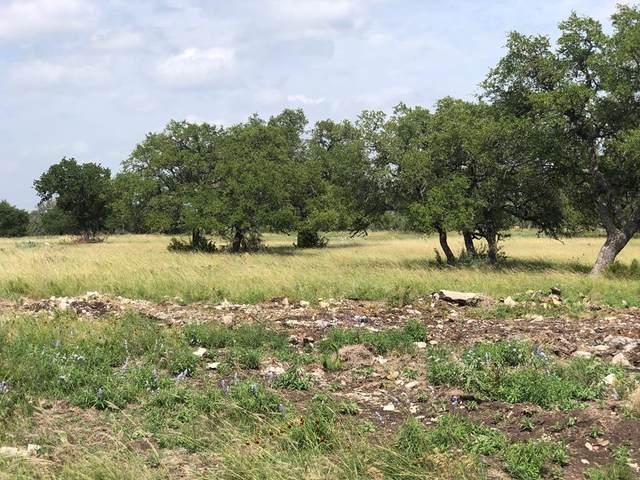 000 W Westridge Ln, Fredericksburg, TX 78624 (MLS #80281) :: Reata Ranch Realty