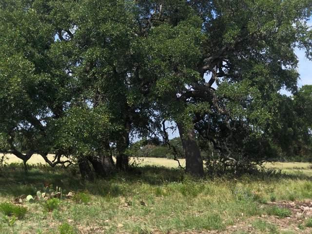 000 W Hwy 290, Fredericksburg, TX 78624 (MLS #80283) :: Reata Ranch Realty