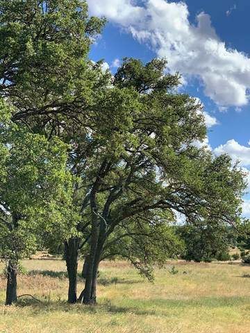86 E Axis Circle, Fredericksburg, TX 78626 (MLS #80401) :: Reata Ranch Realty