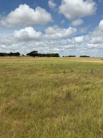 0 -- North Grape Creek Rd, Fredericksburg, TX 78671 (MLS #80451) :: Reata Ranch Realty