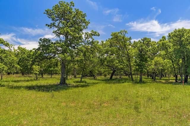 00 -- Mystic Oaks Trail, Fredericksburg, TX 78624 (MLS #80494) :: Reata Ranch Realty
