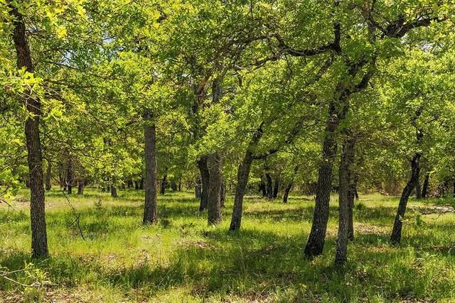 00 -- Mystic Oaks Trail, Fredericksburg, TX 78624 (MLS #80503) :: Reata Ranch Realty